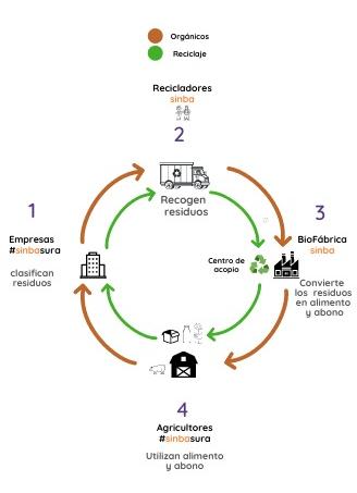 ciclo sinba version mobile